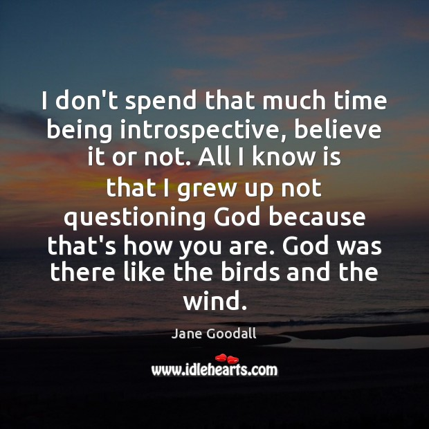 I don't spend that much time being introspective, believe it or not. Jane Goodall Picture Quote