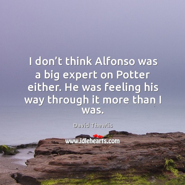 I don't think alfonso was a big expert on potter either. He was feeling his way through it more than I was. David Thewlis Picture Quote