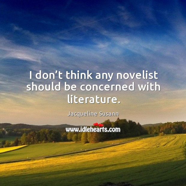 Image, I don't think any novelist should be concerned with literature.