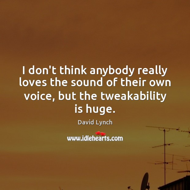 Image, I don't think anybody really loves the sound of their own voice,