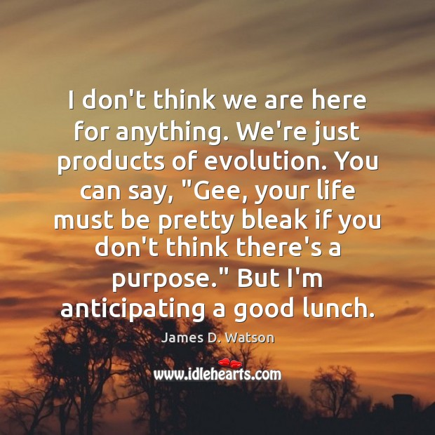 I don't think we are here for anything. We're just products of James D. Watson Picture Quote