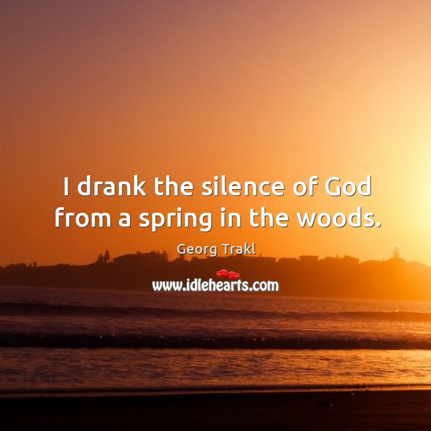 I drank the silence of God from a spring in the woods. Image
