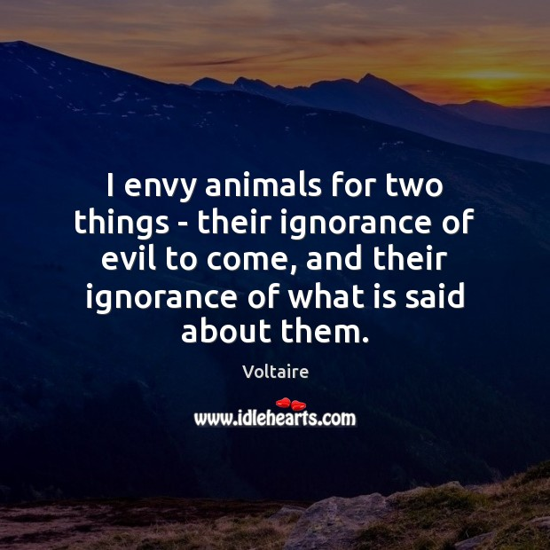 I envy animals for two things – their ignorance of evil to Image