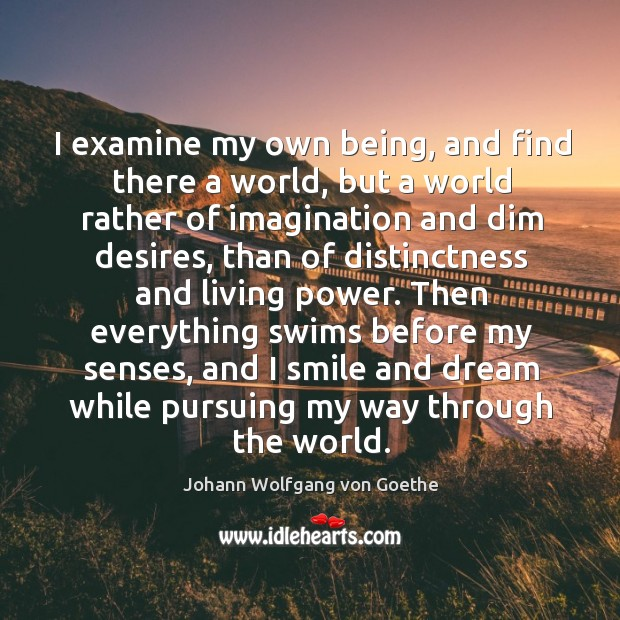 I examine my own being, and find there a world, but a Image