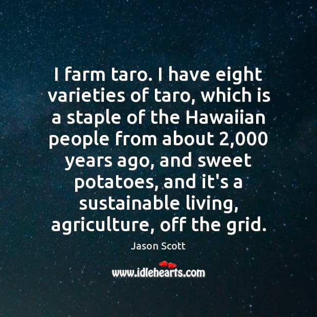 I farm taro. I have eight varieties of taro, which is a Image