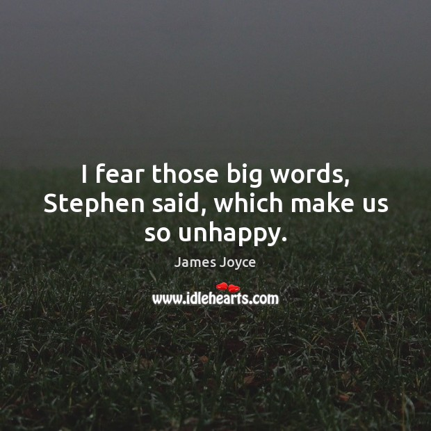 I fear those big words, Stephen said, which make us so unhappy. Image