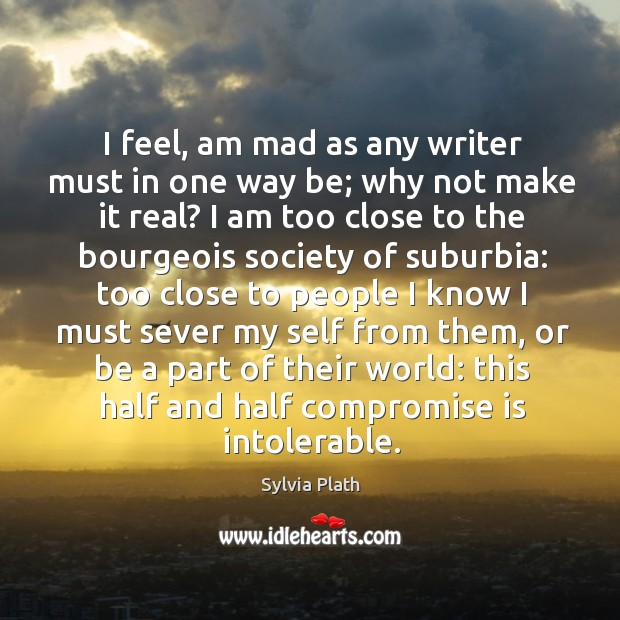 Image, I feel, am mad as any writer must in one way be;