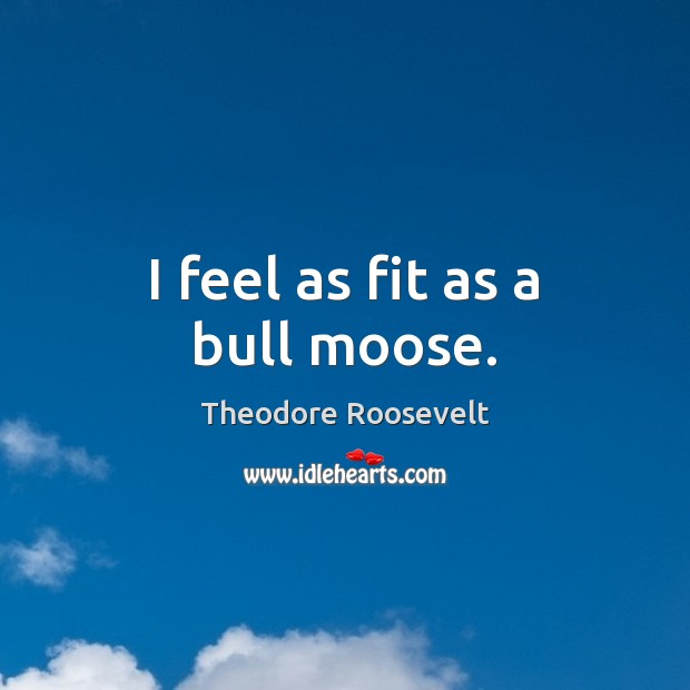 Image, I feel as fit as a bull moose.