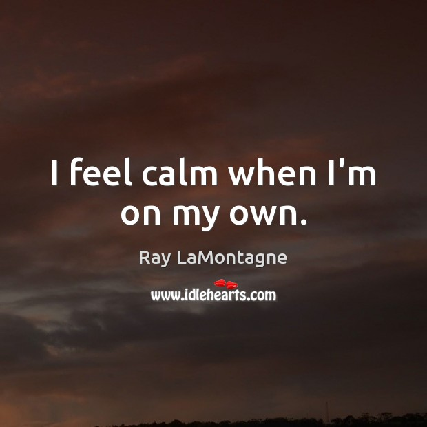 I feel calm when I'm on my own. Ray LaMontagne Picture Quote