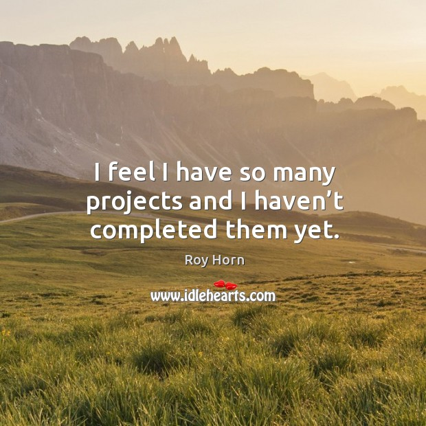 I feel I have so many projects and I haven't completed them yet. Image