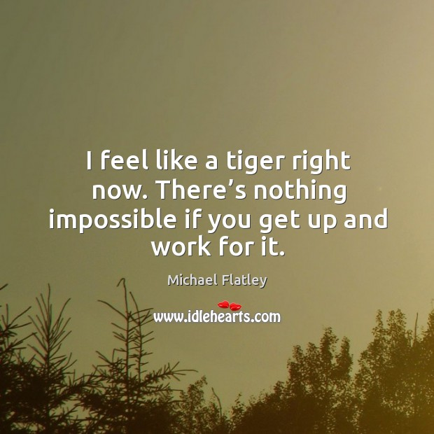 I feel like a tiger right now. There's nothing impossible if you get up and work for it. Michael Flatley Picture Quote