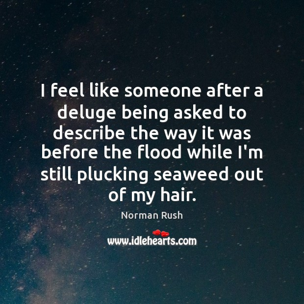 I feel like someone after a deluge being asked to describe the Image