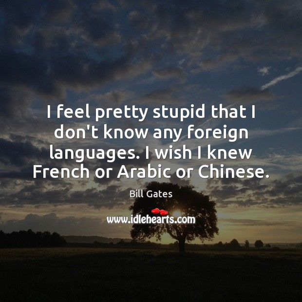 I feel pretty stupid that I don't know any foreign languages. I Bill Gates Picture Quote