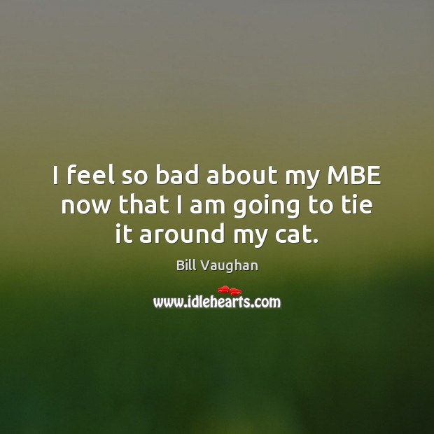 I feel so bad about my MBE now that I am going to tie it around my cat. Image