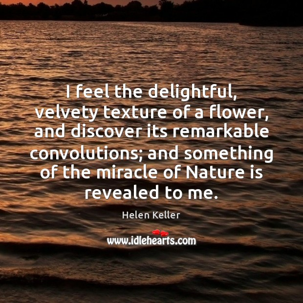 I feel the delightful, velvety texture of a flower, and discover its Image