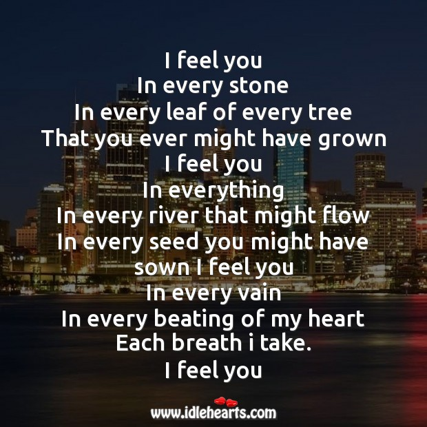 Image, I feel you in every stone in every leaf of every tree