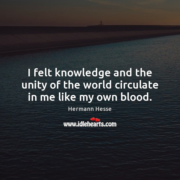 Image, I felt knowledge and the unity of the world circulate in me like my own blood.
