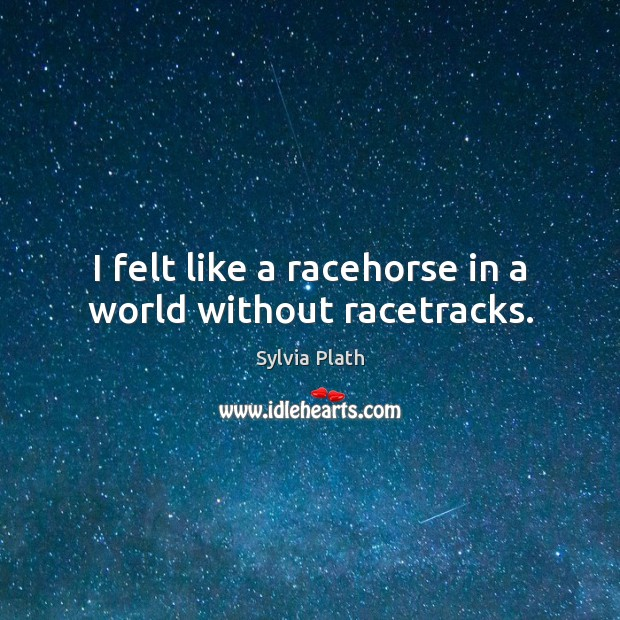 Image, I felt like a racehorse in a world without racetracks.