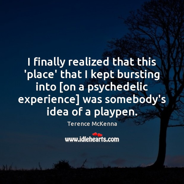 I finally realized that this 'place' that I kept bursting into [on Terence McKenna Picture Quote