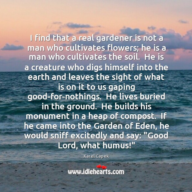 I find that a real gardener is not a man who cultivates Karel Capek Picture Quote