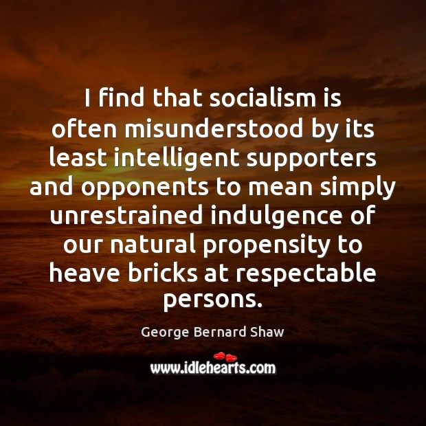 Image, I find that socialism is often misunderstood by its least intelligent supporters