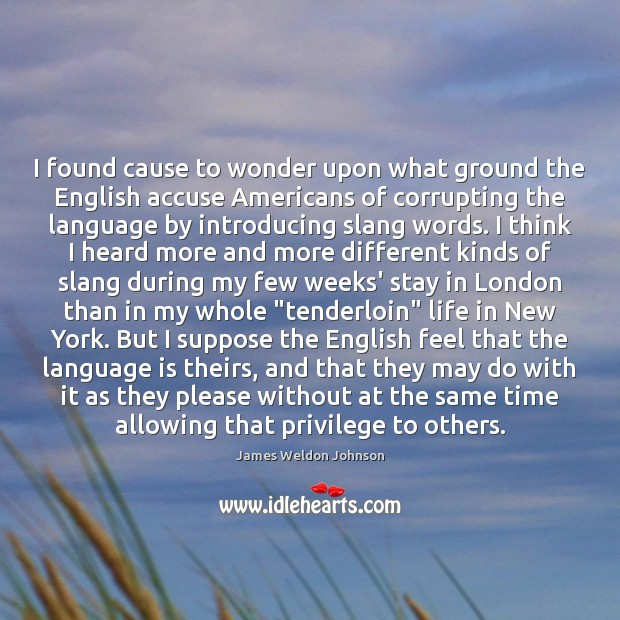 I found cause to wonder upon what ground the English accuse Americans James Weldon Johnson Picture Quote