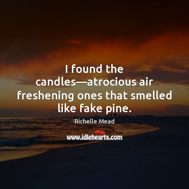 Image, I found the candles—atrocious air freshening ones that smelled like fake pine.