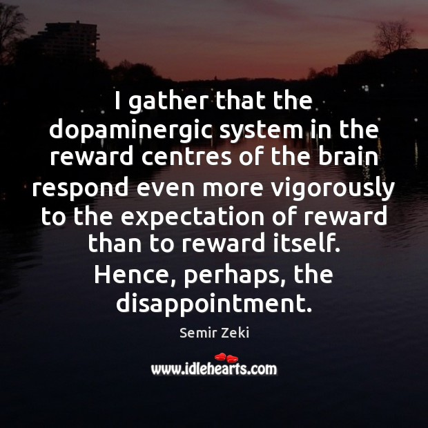I gather that the dopaminergic system in the reward centres of the Image