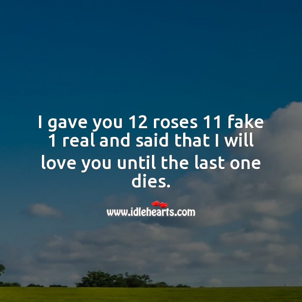 Image, I gave you 12 roses 11 fake 1 real and said that I will love you until the last one dies.