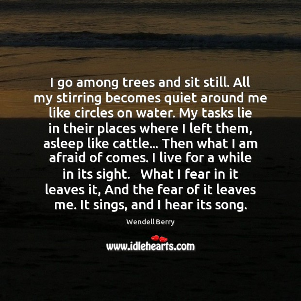 Image, I go among trees and sit still. All my stirring becomes quiet