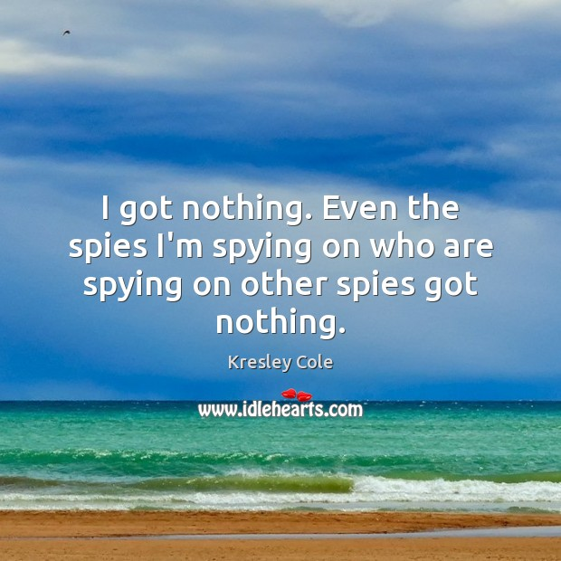 I got nothing. Even the spies I'm spying on who are spying on other spies got nothing. Kresley Cole Picture Quote