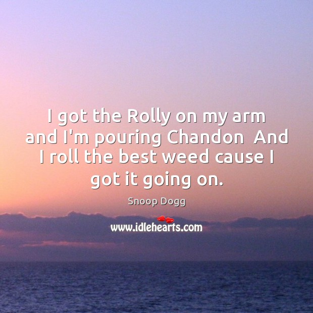 I got the Rolly on my arm and I'm pouring Chandon  And Snoop Dogg Picture Quote