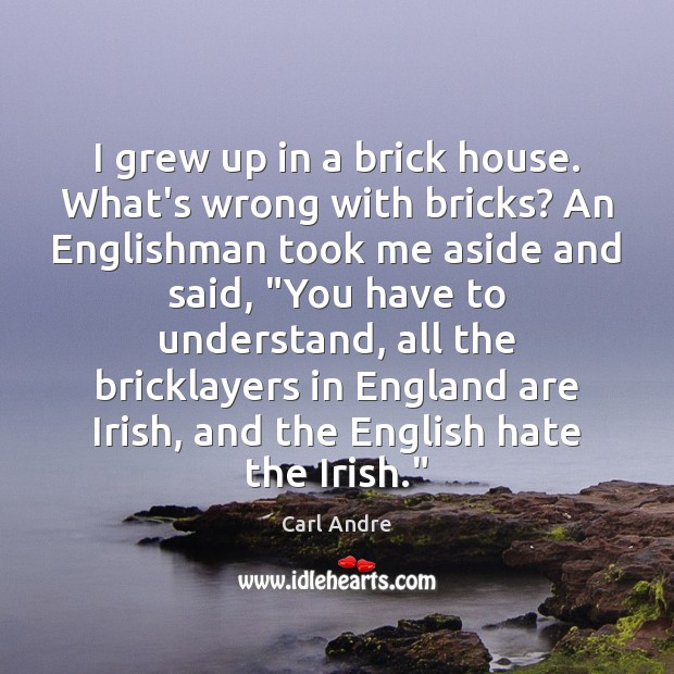 I grew up in a brick house. What's wrong with bricks? An Carl Andre Picture Quote