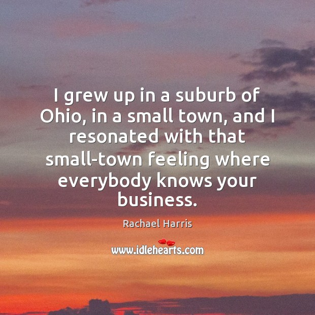I grew up in a suburb of Ohio, in a small town, Rachael Harris Picture Quote