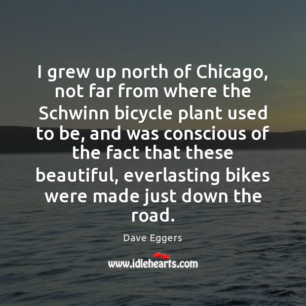 I grew up north of Chicago, not far from where the Schwinn Image