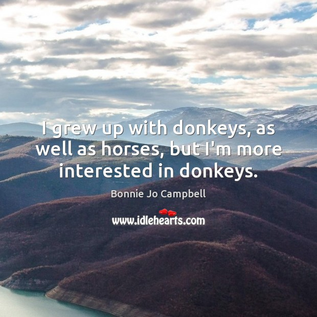I grew up with donkeys, as well as horses, but I'm more interested in donkeys. Image