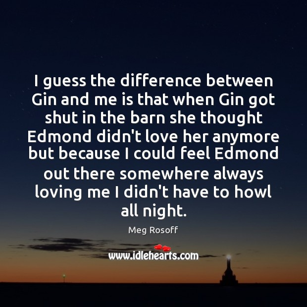 I guess the difference between Gin and me is that when Gin Meg Rosoff Picture Quote