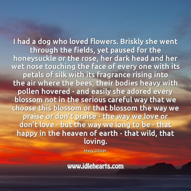 I had a dog who loved flowers. Briskly she went through the Mary Oliver Picture Quote