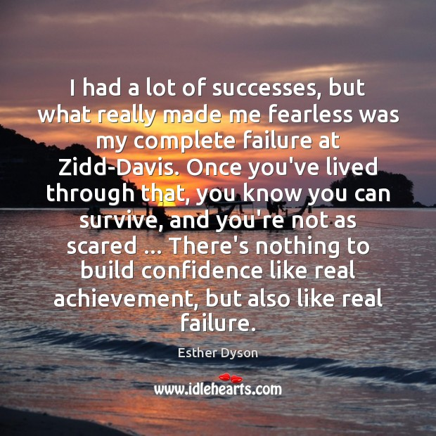 I had a lot of successes, but what really made me fearless Esther Dyson Picture Quote