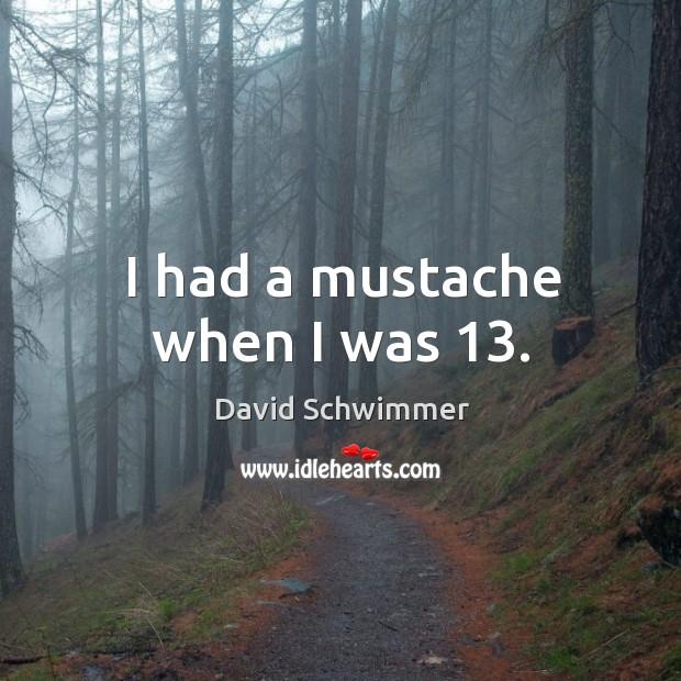 I had a mustache when I was 13. David Schwimmer Picture Quote
