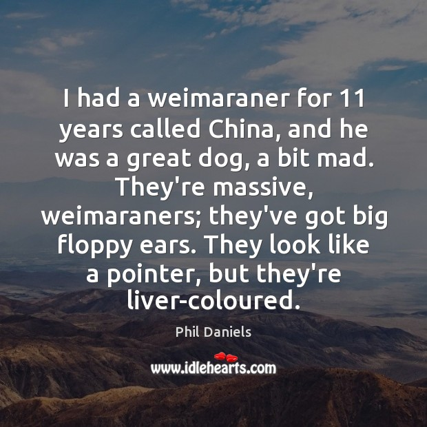 I had a weimaraner for 11 years called China, and he was a Image