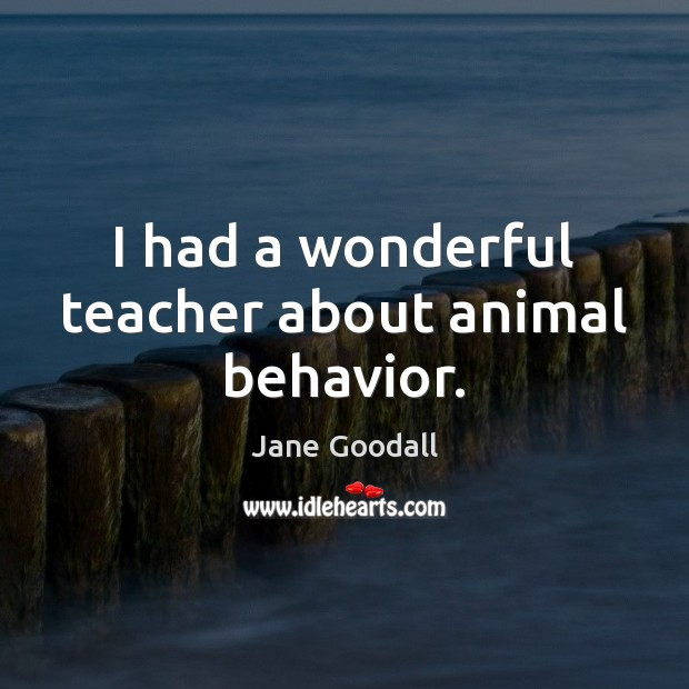 I had a wonderful teacher about animal behavior. Jane Goodall Picture Quote