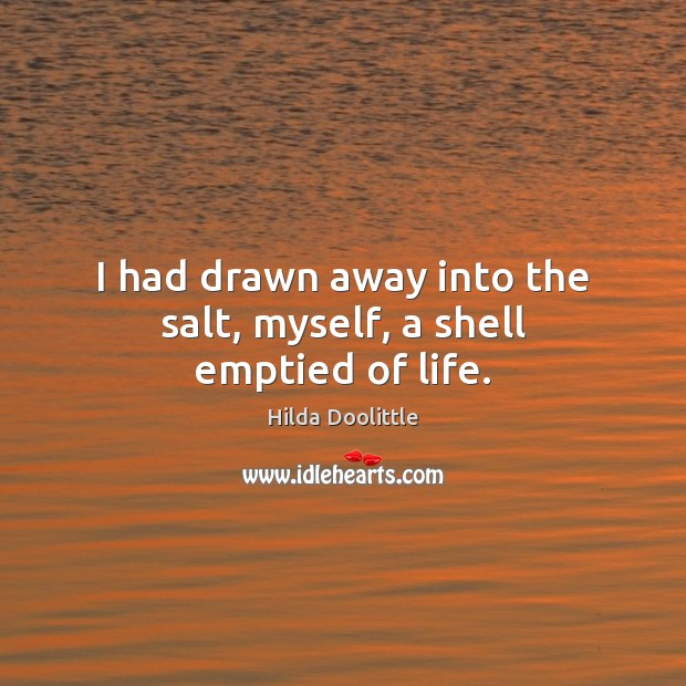I had drawn away into the salt, myself, a shell emptied of life. Hilda Doolittle Picture Quote