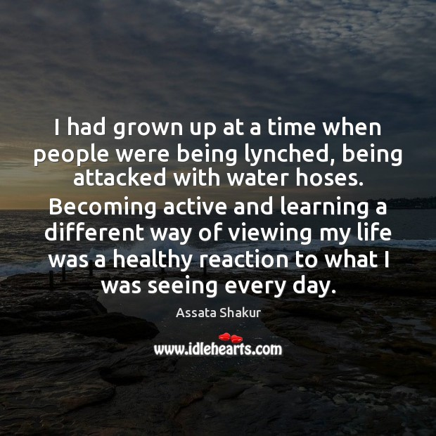 I had grown up at a time when people were being lynched, Image
