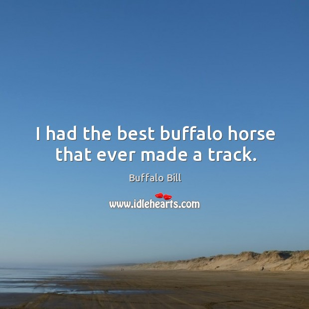 Image, I had the best buffalo horse that ever made a track.