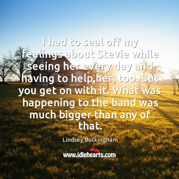 I had to seal off my feelings about stevie while seeing her every day and having to help her, too. Lindsey Buckingham Picture Quote