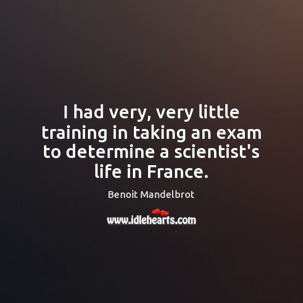 I had very, very little training in taking an exam to determine Benoit Mandelbrot Picture Quote