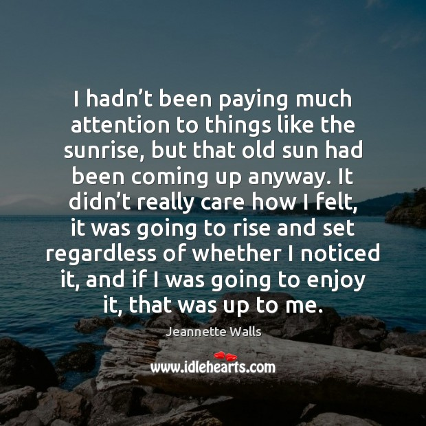 I hadn't been paying much attention to things like the sunrise, Jeannette Walls Picture Quote