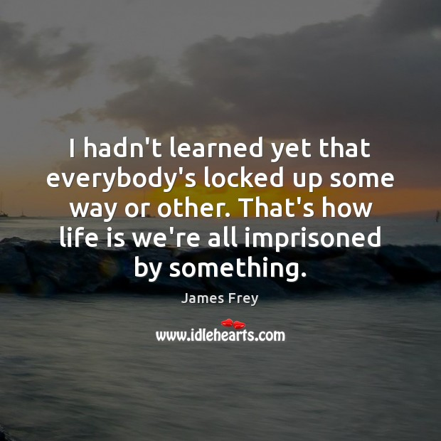 I hadn't learned yet that everybody's locked up some way or other. James Frey Picture Quote