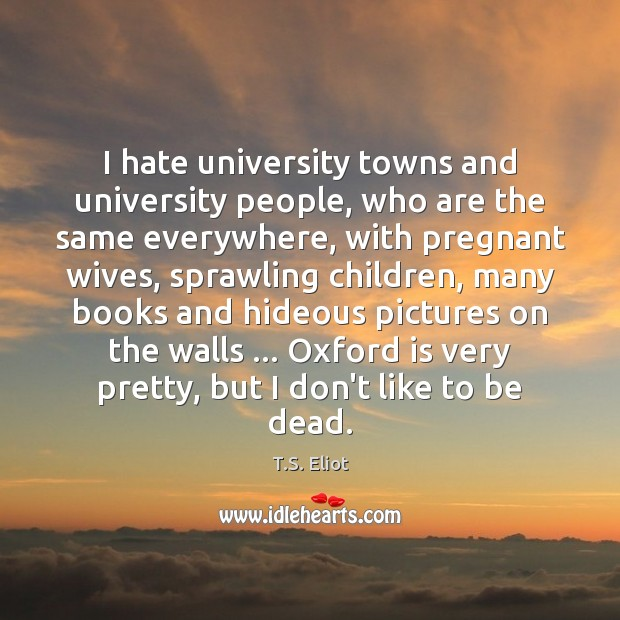 I hate university towns and university people, who are the same everywhere, Image